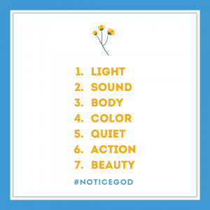 prompts for Instagram #noticeGod
